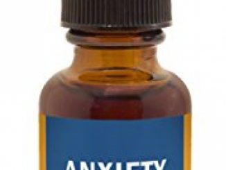 Herb Pharm Anxiety Soother Herbal Formula with Kava For Nervous System Support – 1 Ounce