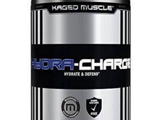 KAGED MUSCLE – Hydra Charge Premium Electrolyte – 60 Servings – Hydrate Faster – Fruit Punch Flavor – Mixes Perfectly with Pre-Intra and Post -Workout Stacks – Tastes Great Reviews