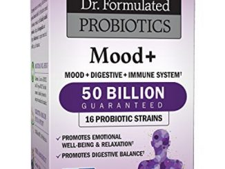 Garden of Life Probiotic and Mood Supplement – Dr. Formulated Mood+ for Digestive and Gut Health, Shelf Stable, 60 Capsules